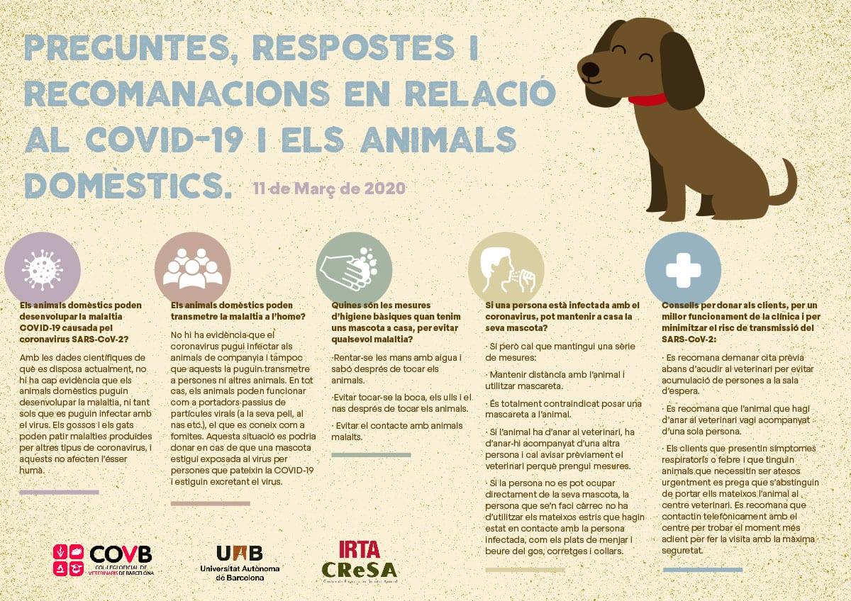informacion veterinaria coronavirus covid-19