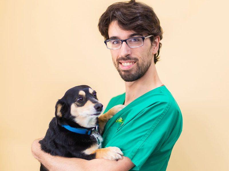 veterinaria-sant-joan-despi-exoticos
